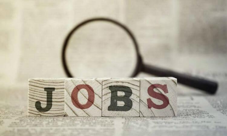mencari lowongan kerja