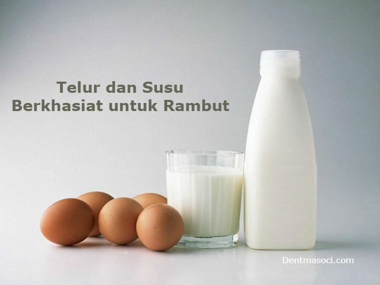 cara meluruskan rambut dengan telur dan susu